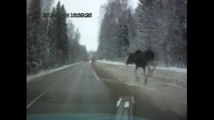 Удар от кола