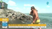 """""""Пълен абсурд"""": Експеримент в края на лятото: На море с по шест лева на ден"""