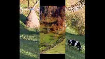[превод] Notis Sfakianakis - Jastar Amenge Dur ( Щилян - черни огнени очи) Vbox7