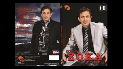 Zoran Zoka Ljubas - Ne govori joj (BN Music)