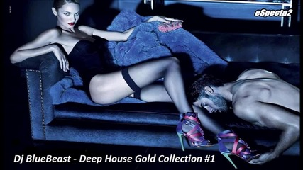 Dj Bluebeast - Deep House Gold Collection #1