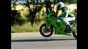 Dragon Riders1