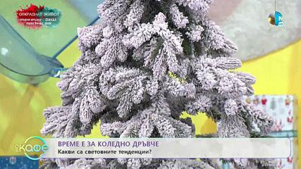 """Йонко Земярски показва новостите при коледните дръвчета - """"На кафе"""" (06.12.2019)"""