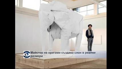 Вижте как майстор на оригами създава слон в реални размери от един лист хартия