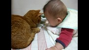 Коте и бебе 1
