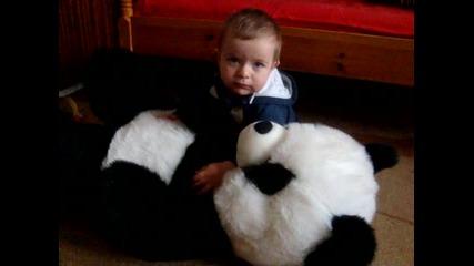 Плами и пандата