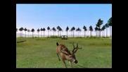 Deer Hunter 2005 World Record Buck
