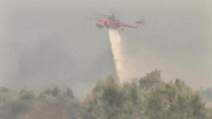 Greece: Structures damaged in wildfire raging in Achaia region