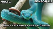Стига съскане на змии в Левски
