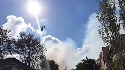 Greece: Huge blaze at Crete university campus in Heraklion