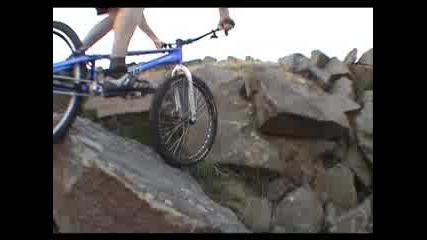 Tarty Bikes - Stan Natural 2