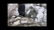 Иван Карачоров (попа) - Тропар на Богоявление
