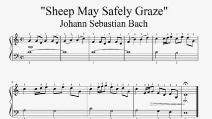 """Johann Sebastian Bach - Sheep May Safely Graze"" - Piano sheet music (by Tatiana Hyusein)"