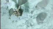 Цветелина Янева - Давай, разплачи ме * Hd *