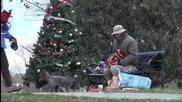 Коледа с палавници