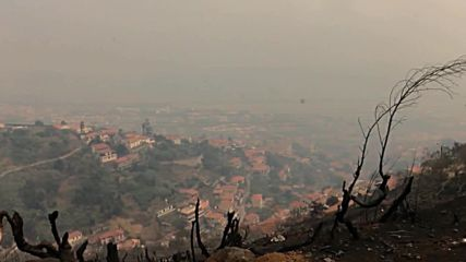 Portugal: Smoke covers Madeira as wildfire forces hundreds out of their homes