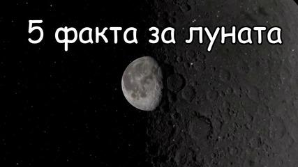 5 факта за луната