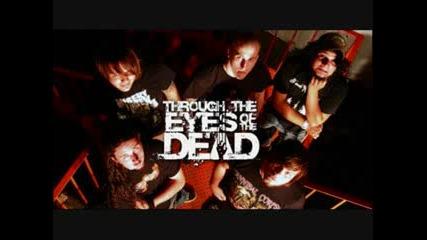 Through The Eyes Of The Dead - Erratic Perception