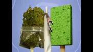 Sponge Bong - Анимация