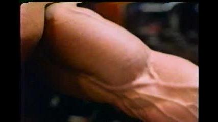 Arnold Schwarzenegger - Biceps