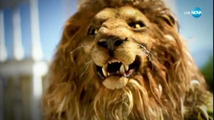 Лъвът изпълнява Pink на Aerosmith | Маскираният певец