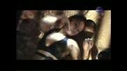 Анелия - Дъх(промо)