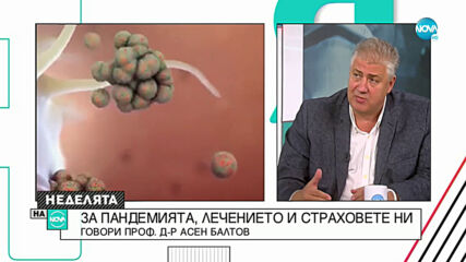 Проф. Балтов: Човек, който е изкарал коронавирус и има антитела, може да работи без маска