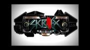 Nobody Likes The Records That You Play Vs. Kill Everybody (ashburner X Skrillex) - Youtube