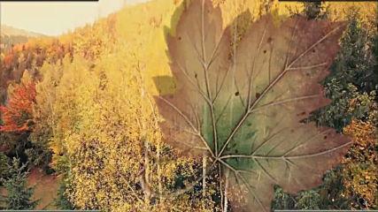 Михаил Урупов - Скоро осень, господа!