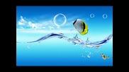 dnb* Therobs - Liquidlife