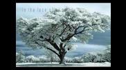 In Winter Still Albinoni Adagio In G Minor