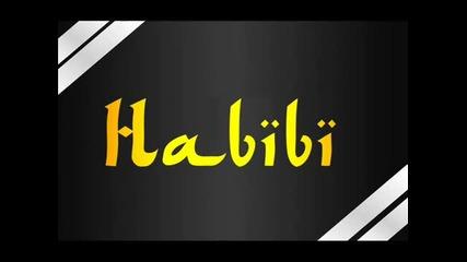 Tony Ray feat Sin Project - Habibi (turkish Radio edit)