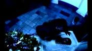 Don Omar - Luna dvdrip bonev 2009