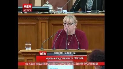 Магдалена Ташева поиска ограда по цялата българо-турска граница, 30.10.2014г.
