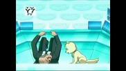 Totally Spies - сезон 4 - арнолд супер греой - картинки - 2 част.