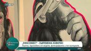 DISCONNECT - живопис, вдъхновена от модата, фотографията и попкултурата
