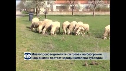 Животновъдите плашат със стачка заради ниските изкупни цени на продукцията