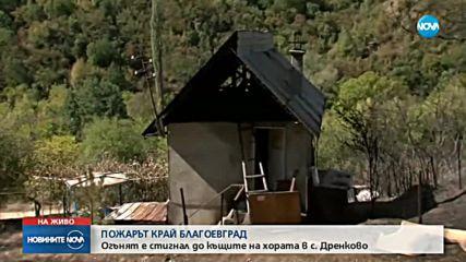 Пожарът в Благоевградско опустоши 400 дка гора, има засегнати къщи