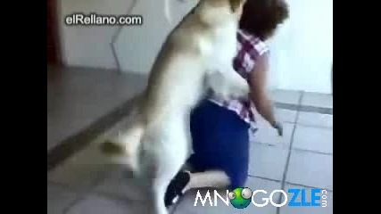 Куче изнасилва баба