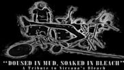 Various Artists - Doused in Mud, Soaked in Bleach; A Tribute to Nirvana's Bleach (2016)-full