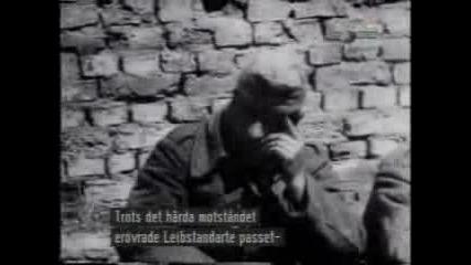 Waffen Ss The Liebstandarte Division