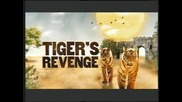 Отмъщението на тигъра