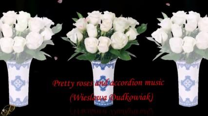 Красиви рози и акордеон! ... ( Wieslawa Dudkowiak)