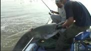 Най-добрите рибари - Мега риби