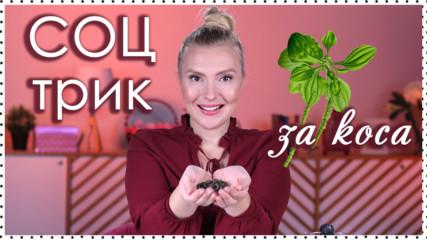 Соц трик с ЖИВОВЛЯК - бабина рецепта за по-ДЪЛГА и БЛЯСКАВА КОСА!
