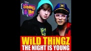 Wild Thingz - The Night is Young (music Only)