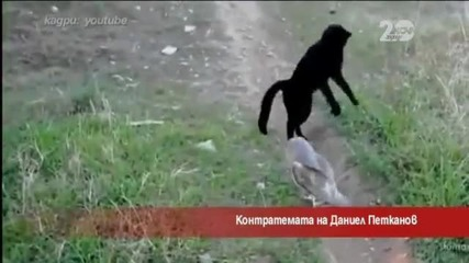 Контратемата на Даниел Петканов - Часът на Милен Цветков (07.10.2014г.)