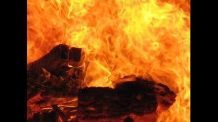 Focul Tau (360p)