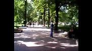 Готино Паркче В Свищов 2