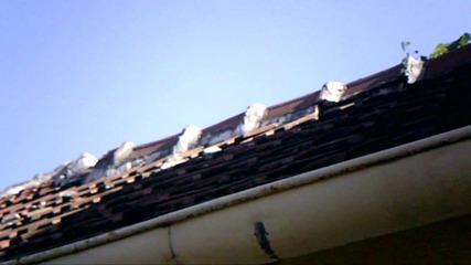 Хвърляне на човек в човал от покрив!